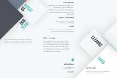 Cleanse Brochure (back)